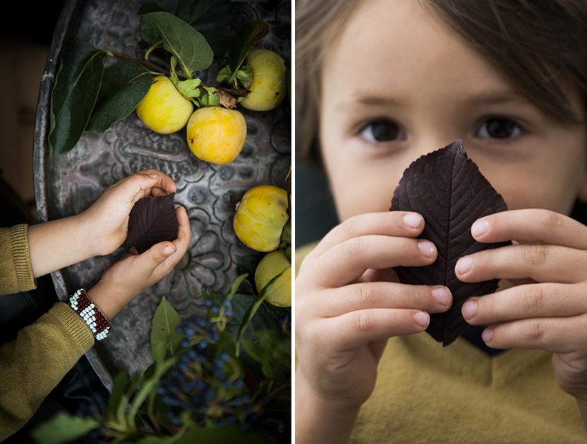 decorare una torta foglie di cioccolato