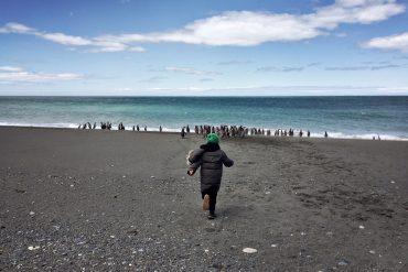 Cabo Virgenes Patagonia pinguinera
