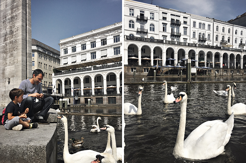 cosa fare ad Amburgo