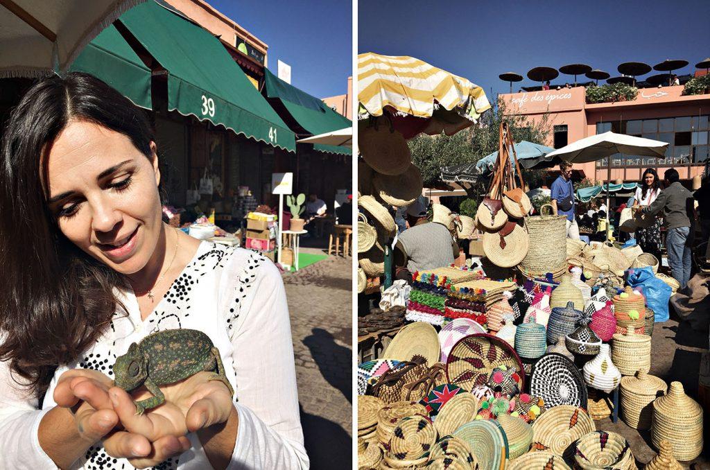 cosa vedere a marrakech epices