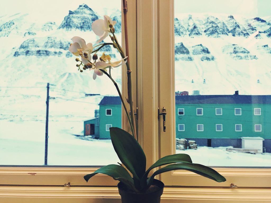 viaggio al polo nord lonyearbyen
